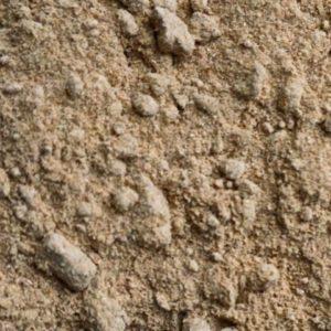 AmchoorMango powder