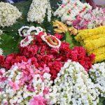 Grant road flower stall (2)